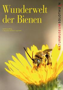 15_Bienen_Vorderseite